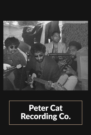 Peter cat recording co. interview